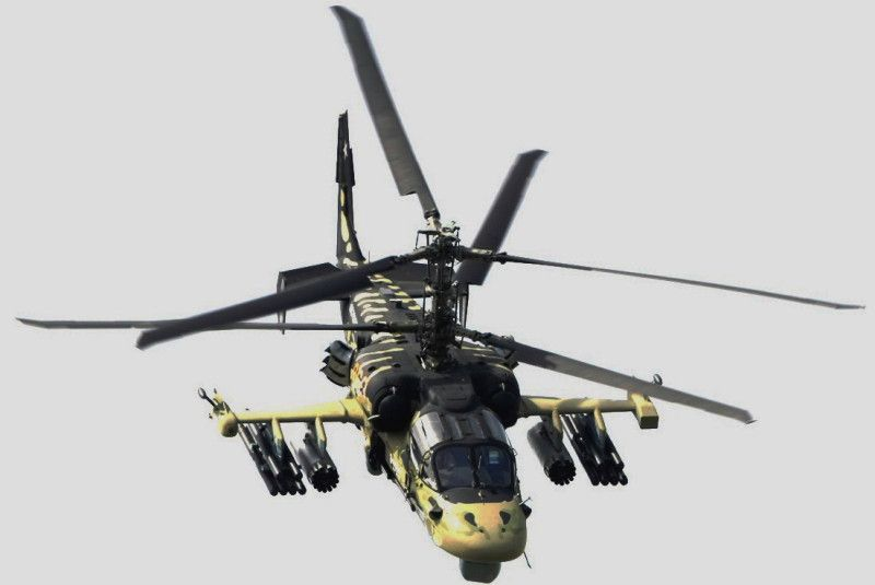 RudKa52Alligator-S