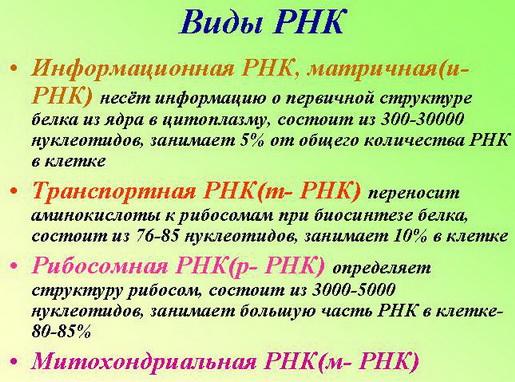 RudBMRu-S2sml