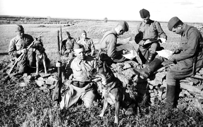 DogSoldats1942
