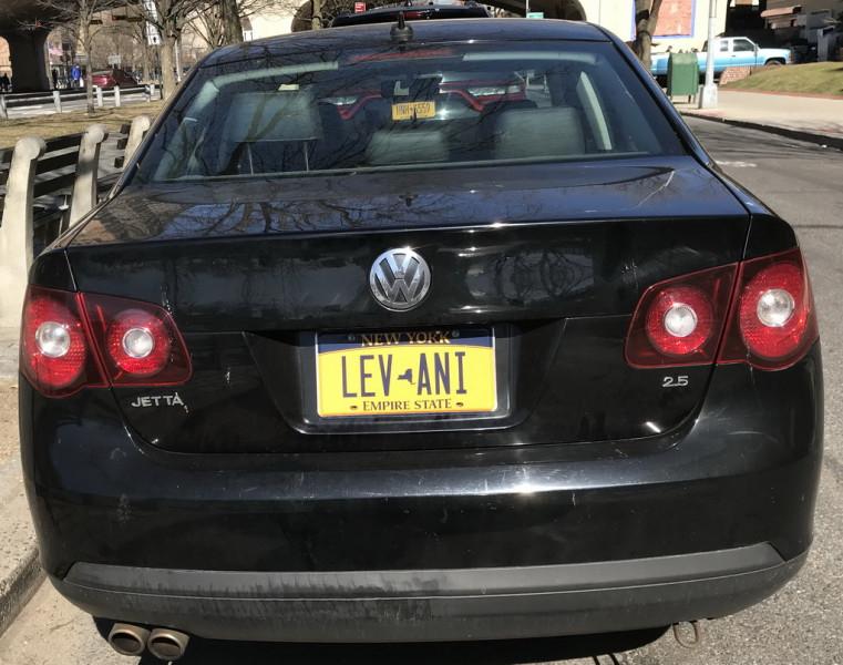 LEV-ANI